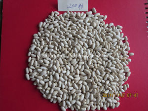 Long Type White Kidney Bean pictures & photos