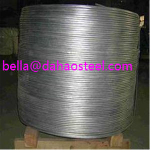 Low Carbon Steel Wire Rod SAE1008 SAE1006 5.5mm pictures & photos