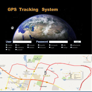 GPS Tracker Fuel Sensor with Fuel Monitoring on Web Tracking Software (KS168F)