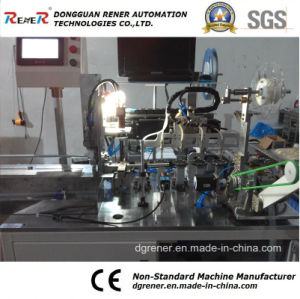 Non-Standard Automatic Packaging Machinery CCD Testing Machine pictures & photos