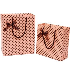 Custom Printing Promotional Paper Bag with Cotton Handle
