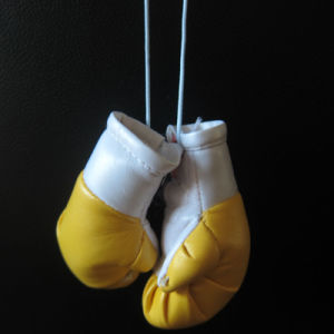 Boxing Gloves Room/Car Air Freshener pictures & photos
