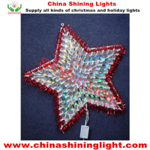 Southamerica Popular Party Holiday Decoration LED Lights pictures & photos