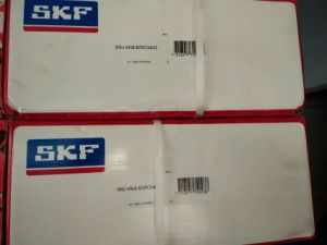 Cylinderical Roller Bearing Nnu4948 SKF Bearing
