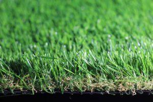 Garden Turf E635216gdq12041