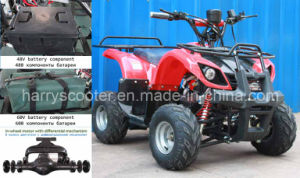 2012 New 800W in-Wheel Motor with Differential