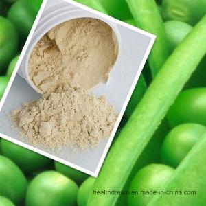 Orgnic Pea Protein Powder 80%-85%