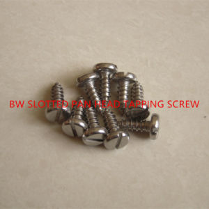 DIN7971 Slotted Pan Head Tapping Screw pictures & photos