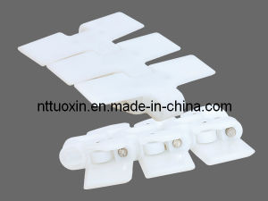 Plastic Chain (RT114) for Dairy Industry pictures & photos