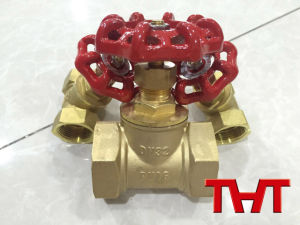 Brass Gate Valve with NPT Thread Connection/ Small Size pictures & photos