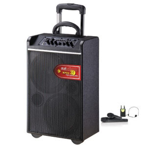 Professional Battery Speaker with Handles and Trolley Wheels (A-7B)