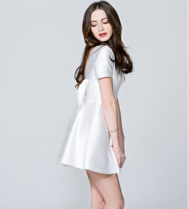 New Style Tube Short Sleeves Round Neck A-Line Princess Slim High-Waist Dress pictures & photos
