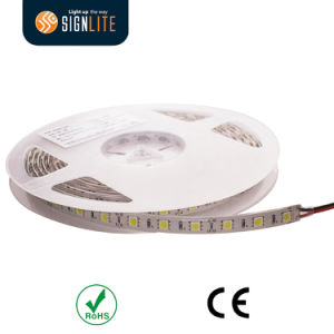 Manufacturer 300LEDs/ 60LED/M IP64 Epoxy Resin Waterproof Warm White SMD5050 LED Flexible Strip Light pictures & photos