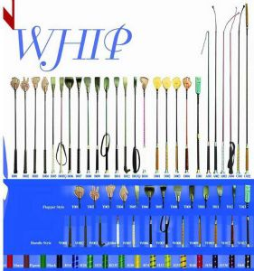 Horse Whip pictures & photos