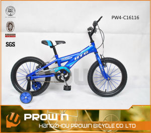 2014 16 Inches Southeast Asia Steel Frame Kids Bike (PW4-C16116)