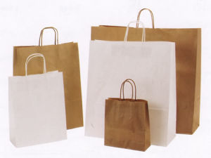 Paper Bag for Shopping, Gift, Promotional, Food pictures & photos