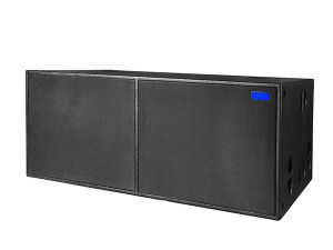221BBS New Design PA System PRO Audio Powerful Bass Subwoofer pictures & photos