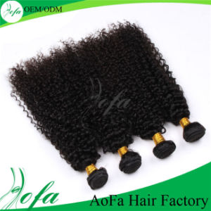 Virgin Brazilian Human Hair Kinky Curly Hair Wigs pictures & photos
