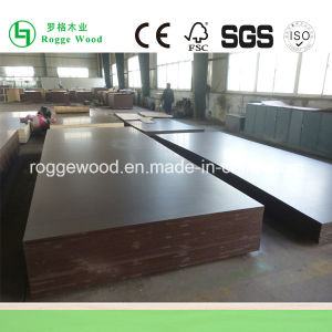 Big Size Film Faced Plywood 18mm