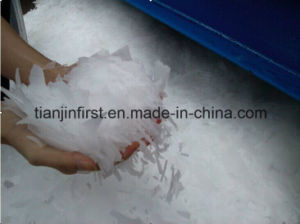 Top Quality Flake Ice Machine, High-Giant Flake Ice Machine pictures & photos