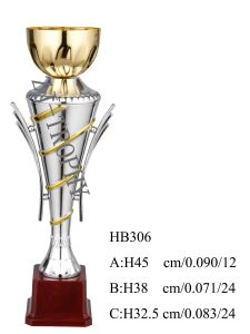2013 New Design Metaldecoration Trophy Hb306 pictures & photos