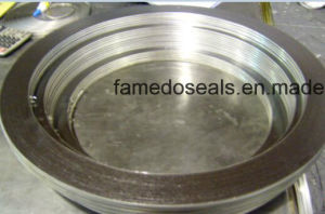 ASME B16.20 Ss316 Spiral Wound Gaskets pictures & photos