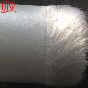 High Strength Woven Geotextile for Geotube pictures & photos
