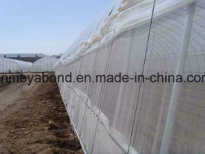Plastic Insect Nets/Greenhouse Anti Insect Net for Agriculture pictures & photos
