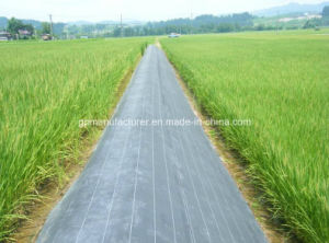 PP Woven Geotextile for Road Construction pictures & photos