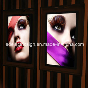 Cable Display System with LED Light Box pictures & photos