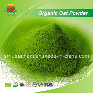 Manufacture Supply Organic Oat Grass Powder pictures & photos