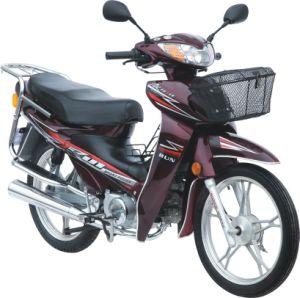 110cc Cub Motorbikes Street Bike (HD110-6K)