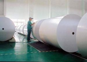 100% Virgin Wood Pulp Lwc Paper in Roll/Sheet China Manufacturer pictures & photos