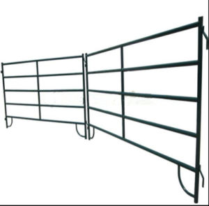 Economy 5foot*10foot Portable Horse Stable Panel/Cattle Corral Panel pictures & photos