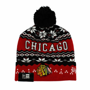 Logo Embroidery & Knitted Letter Winter Hats for Man & Women pictures & photos