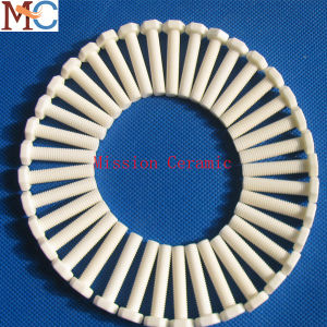 High Quality Wholesale Al2O3 Alumina Screw pictures & photos
