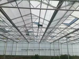 The USA EU Market Greenhouse pictures & photos