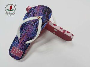2015 Newest Colorful Fashion Rubber Flip Flop pictures & photos
