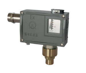 High Sensitivity Adjustable Standard Bellow Type High Explosion-Proof Pressure Switch 502/7D