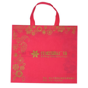 China Manufacturer for PP Non-Woven Shopping Bags (FLN-9043) pictures & photos