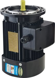 1/4 - 10HP Three-Phase Electric Motor, Gear Motor pictures & photos