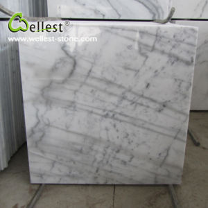 M500 Guangxi Elegant White Marble with Grey Veins Polished Tile pictures & photos