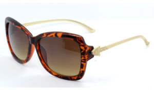 The New Fashion Sunglasses (C0119) pictures & photos