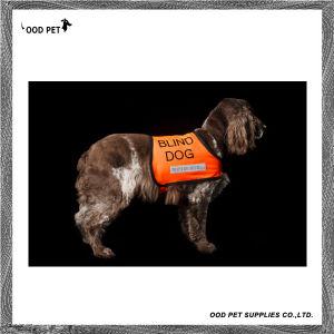 Blind Dog Reflective Service Dog Vest Spr6025 pictures & photos