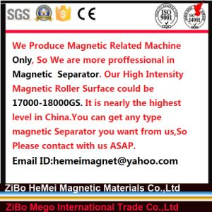 You Can Get Any Type of Magnetic Separator You Want From Us pictures & photos