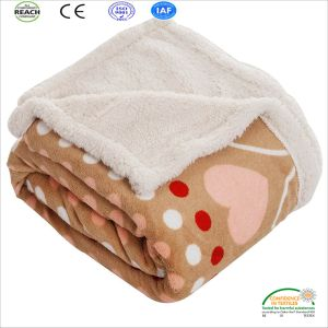 Coral Fleece Blanket Bed Cover Factory Direct Sell pictures & photos