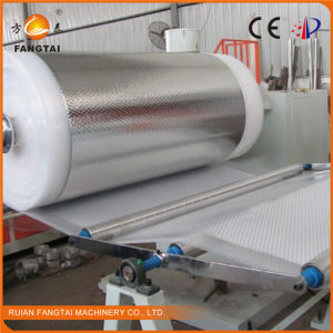 PE Bubble Film Machine (one extruder) 2 Layer 800mm pictures & photos