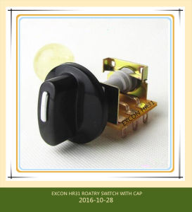 Hr31 16A Oven Rotary Switch pictures & photos