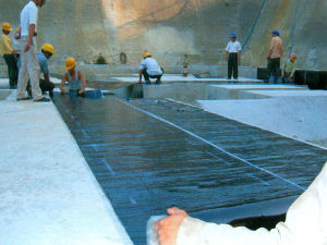 Bitumen Waterproof Membrane with High Quality, Low Price pictures & photos