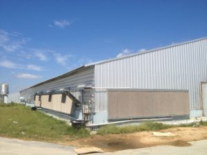 New Design Steel Structure Chicken Farm pictures & photos
